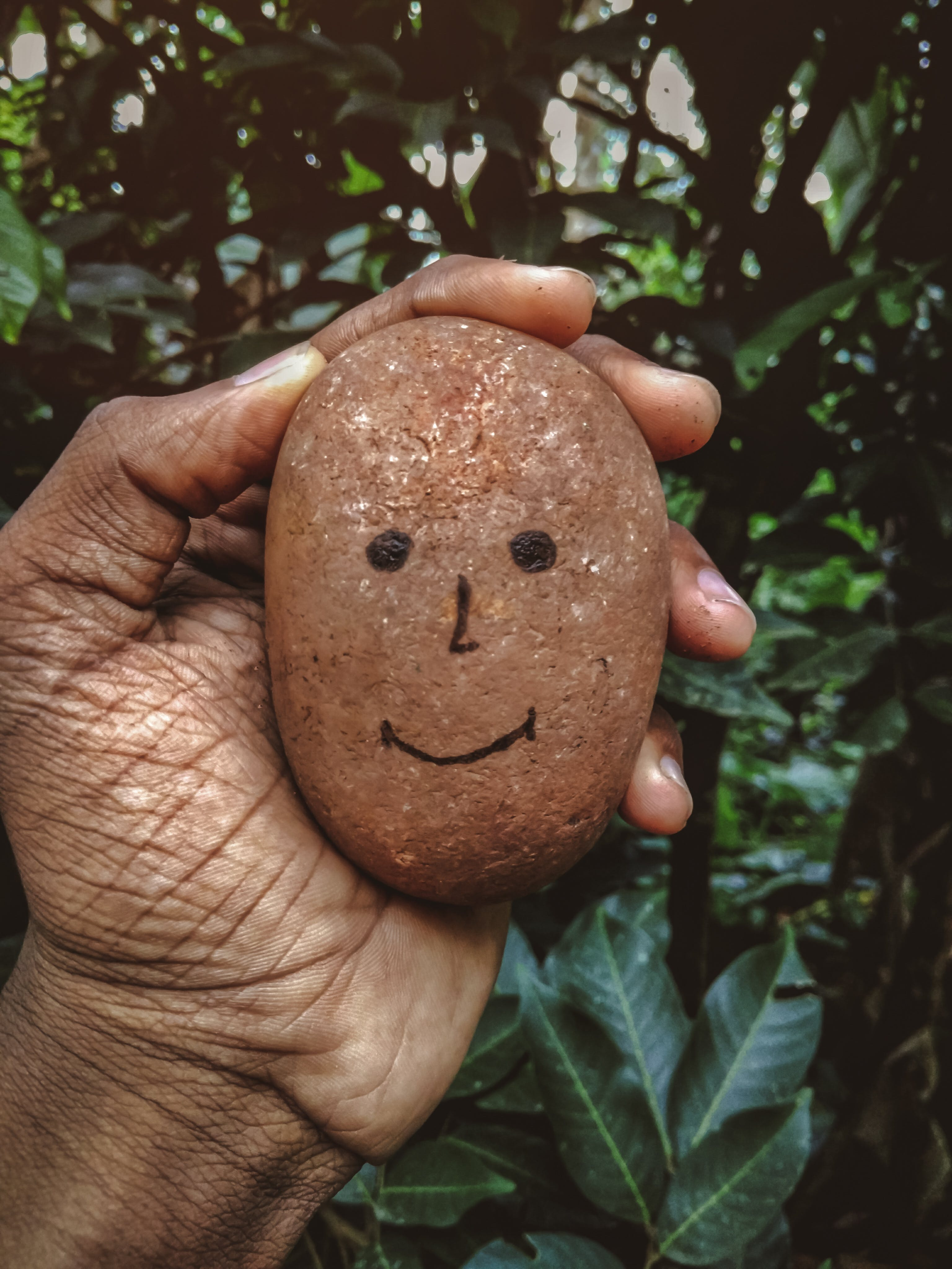 Person Holding Brown Stone