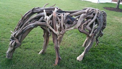 Free stock photo of Wood horse