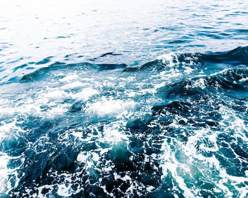 Foto stok gratis air, alam, busa laut, gelombang