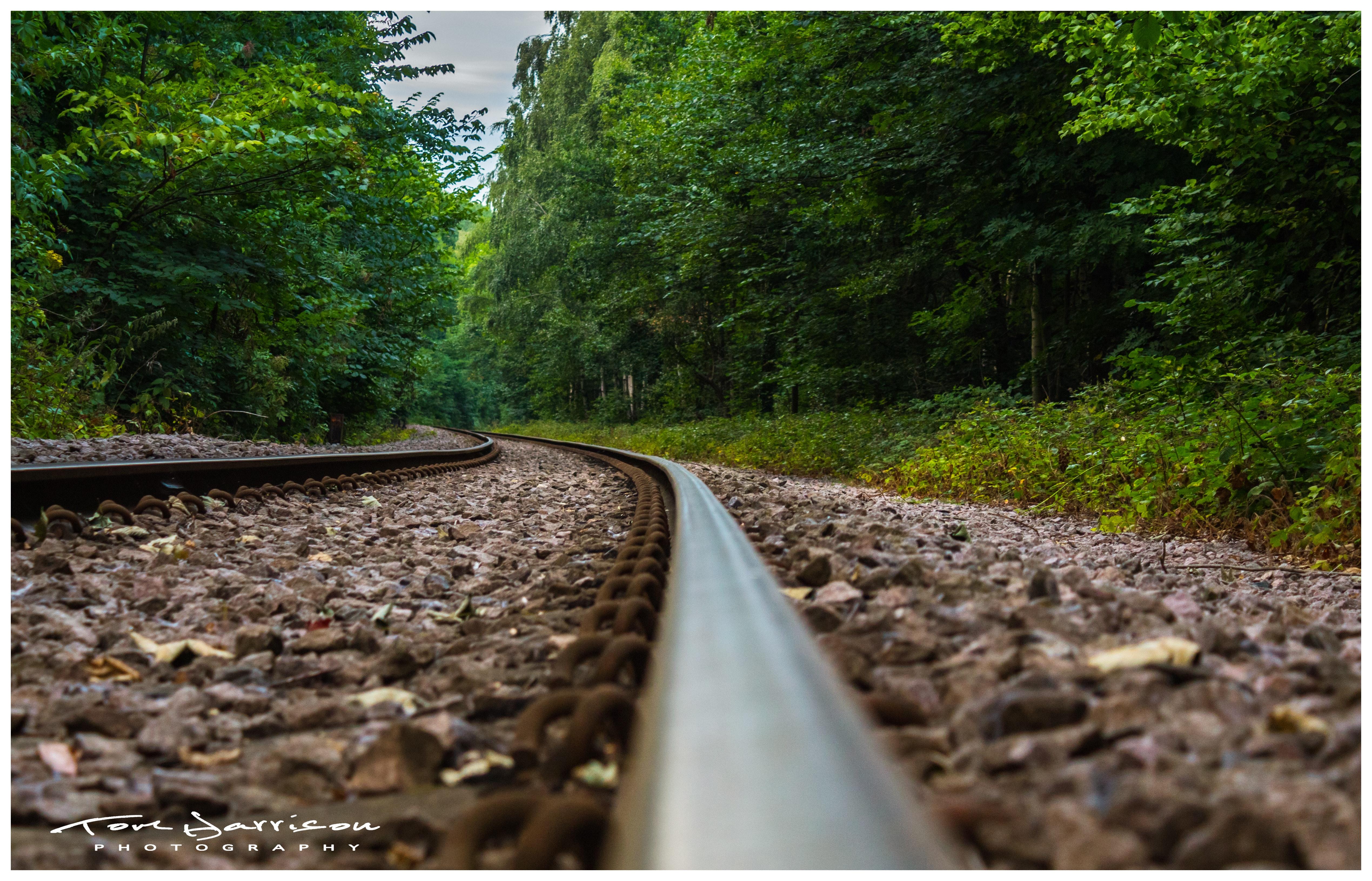 Free stock photo of carved wood, rail road, train tracks