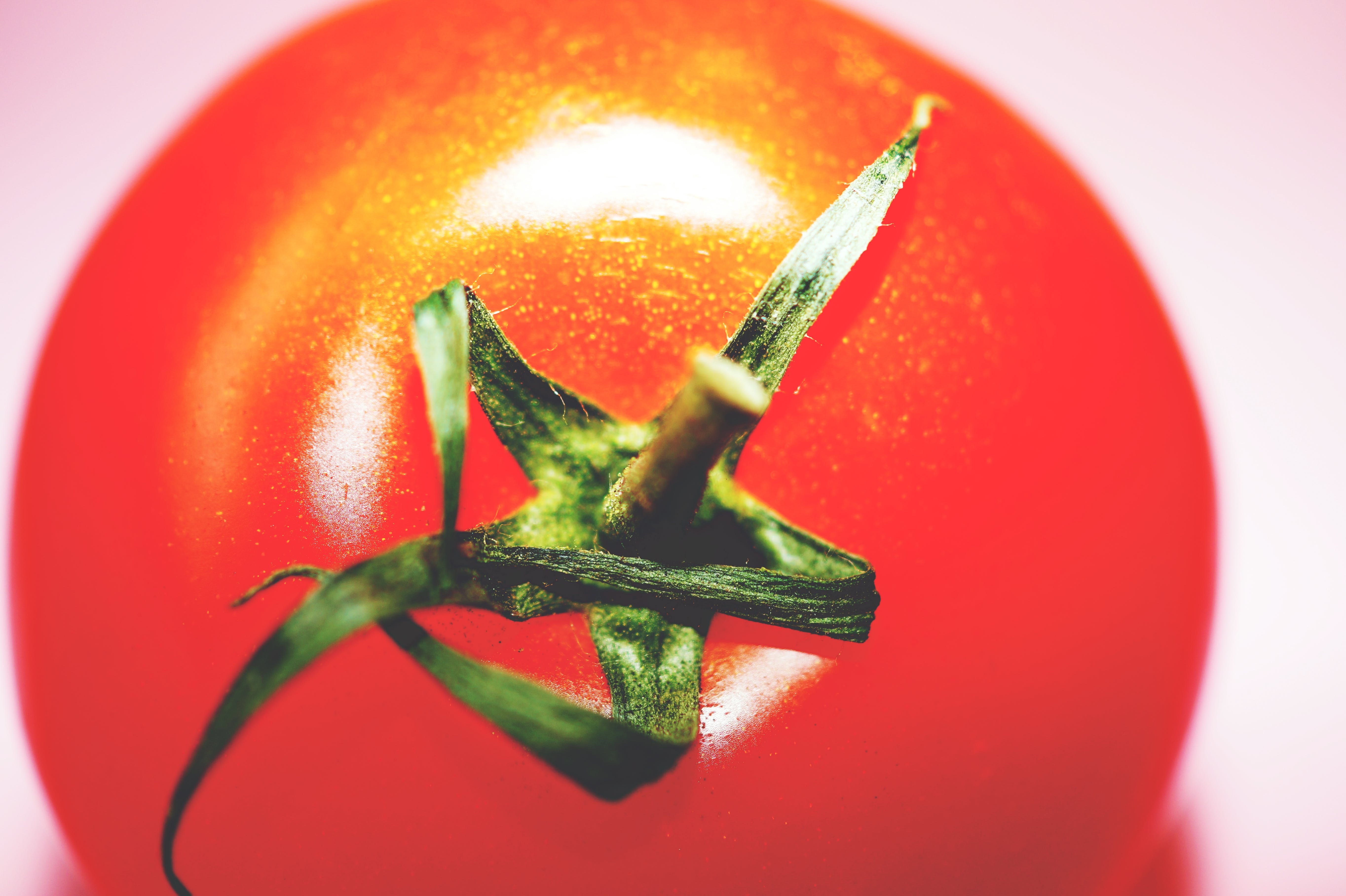 Closeup Photography of Red Tomato