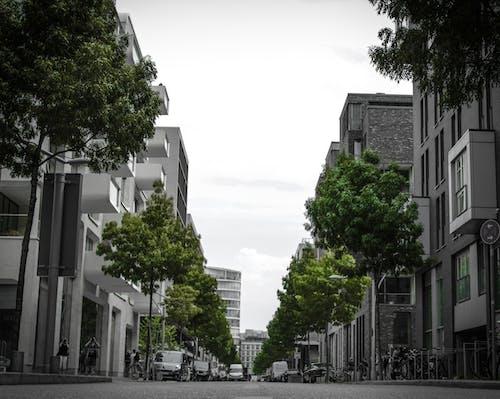 Foto stok gratis abu, Arsitektur, Arsitektur modern, Bangunan modern