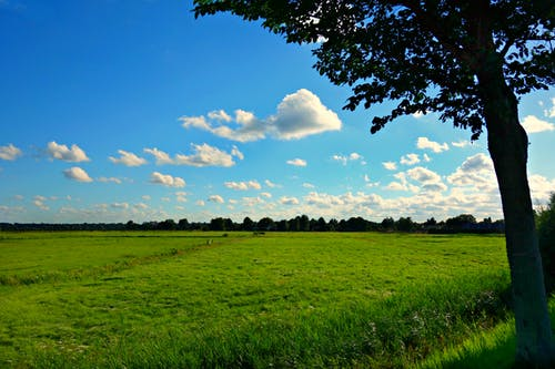 Free stock photo of clouds, field, grass, landscape