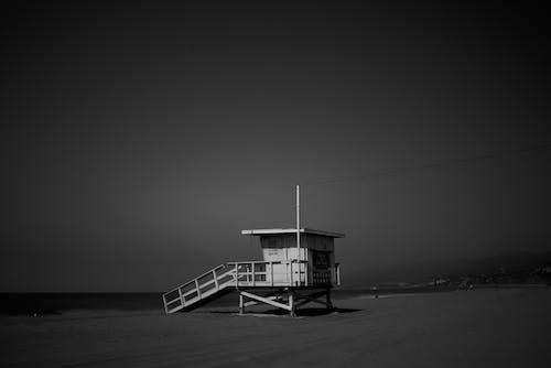 ガイダンス, シースケープ, ビーチ, モノクロームの無料の写真素材