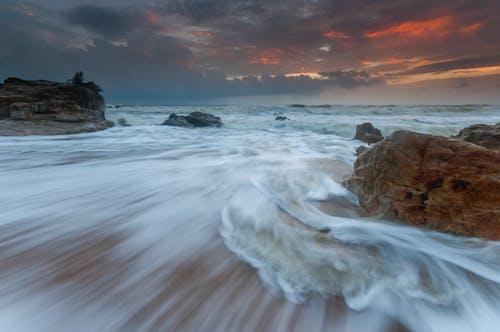 Безкоштовне стокове фото на тему «вода, вродлива, дерево, камінь»