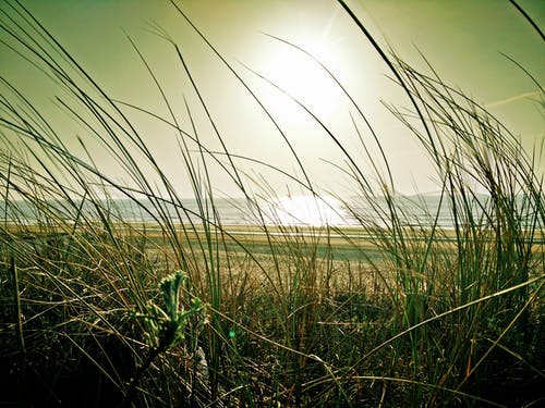 Darmowe zdjęcie z galerii z blask słońca, krajobraz, morze, natura