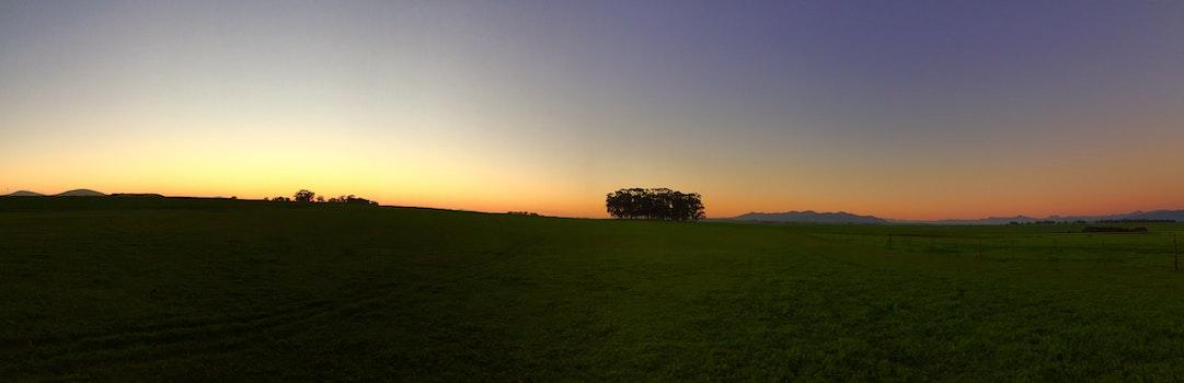 Sunrise on Green Grass Field