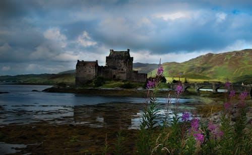Foto d'estoc gratuïta de castell, Escòcia, natura