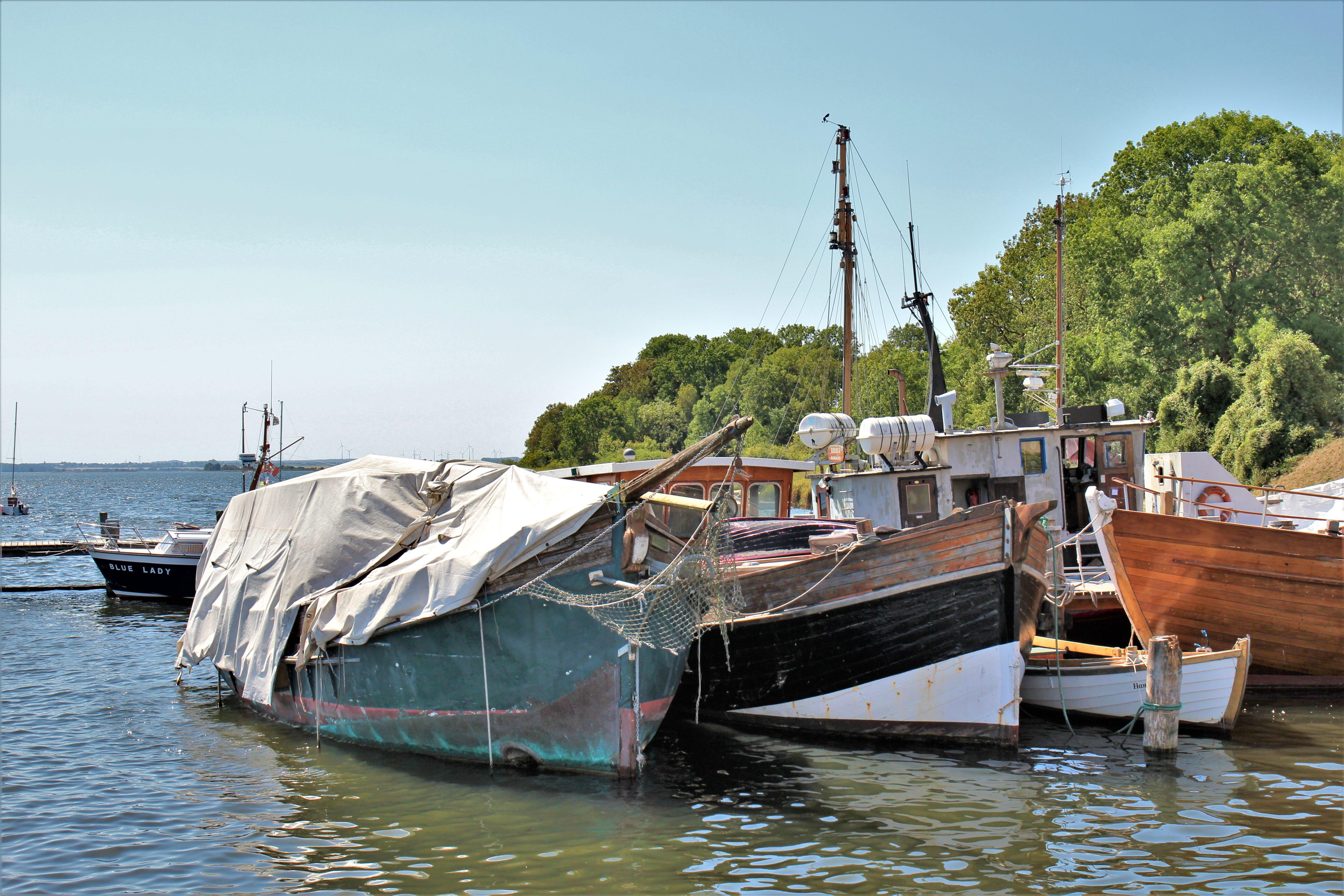 Free stock photo of port, boat, sailboat