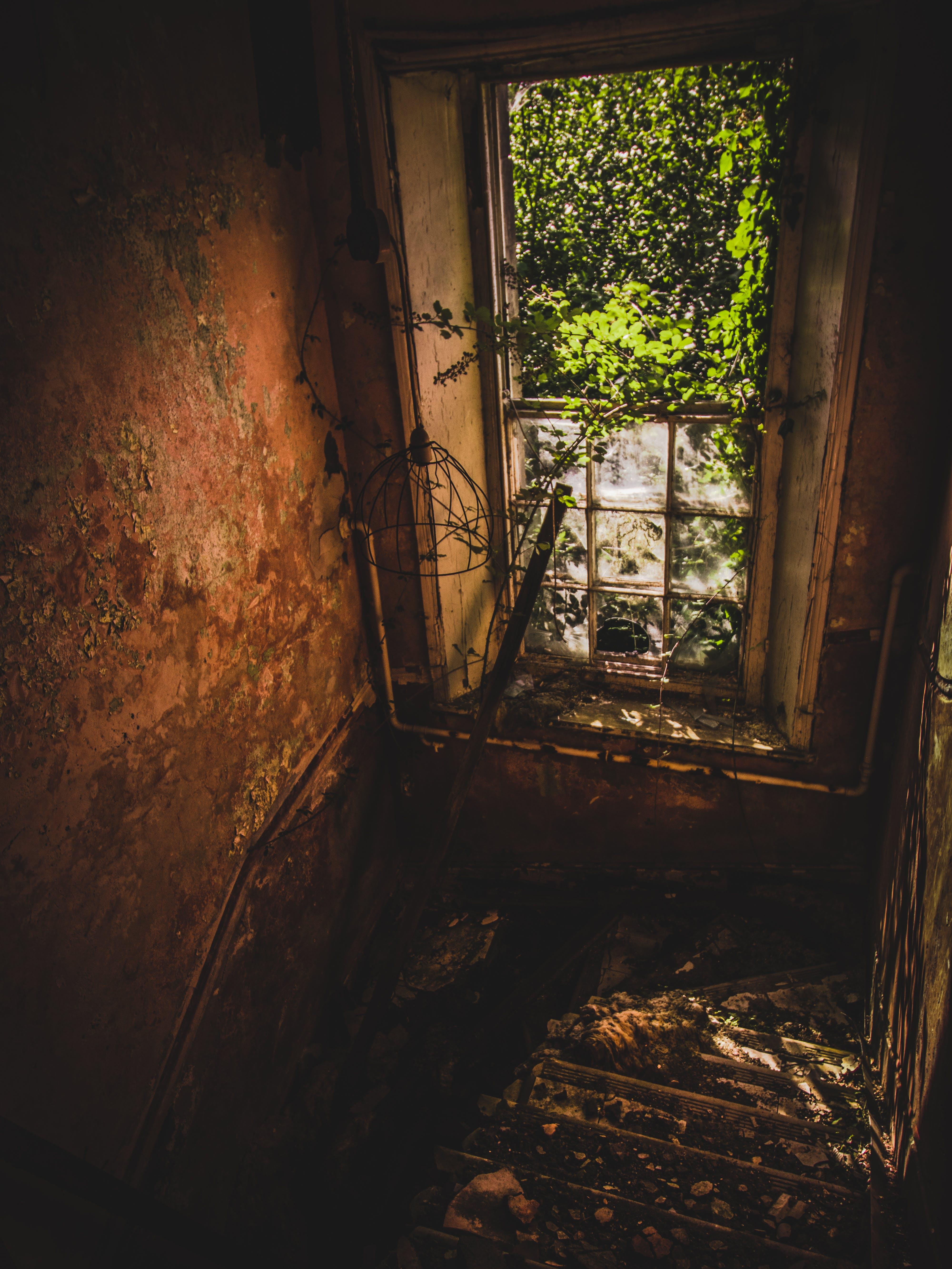 Free stock photo of abandoned, creepy, hospital, old
