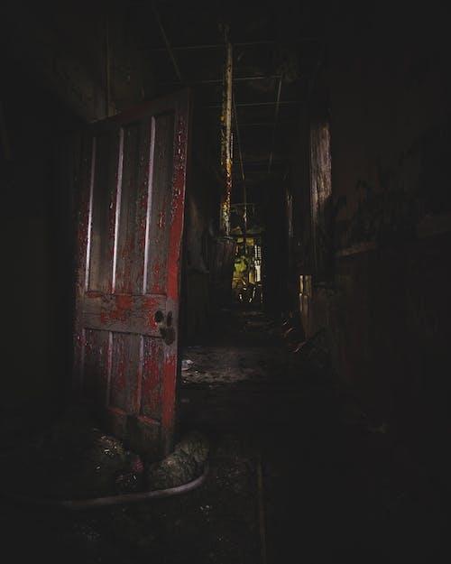 廃墟, 怖い, 気味が悪い, 病院の無料の写真素材