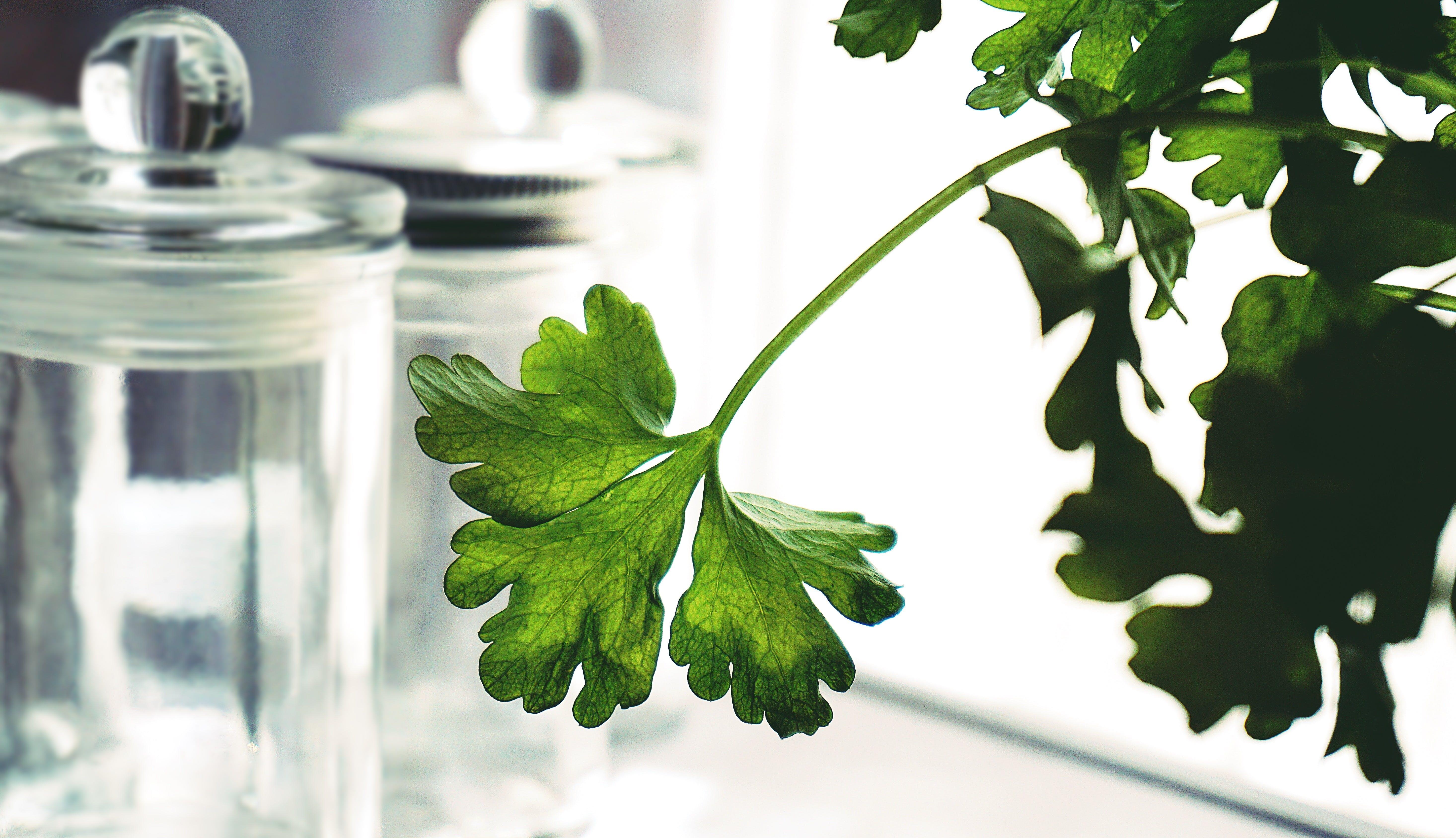 Imagine de stoc gratuită din alimentație sănătoasă, aromat, bucătărie, containere