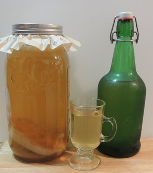 Free stock photo of fermentation, fermented foods, homemade kombucha, kombucha tea