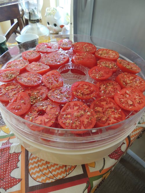 Free stock photo of dehydrated tomatoes, dehydrator, dried fruits, dried tomatoes