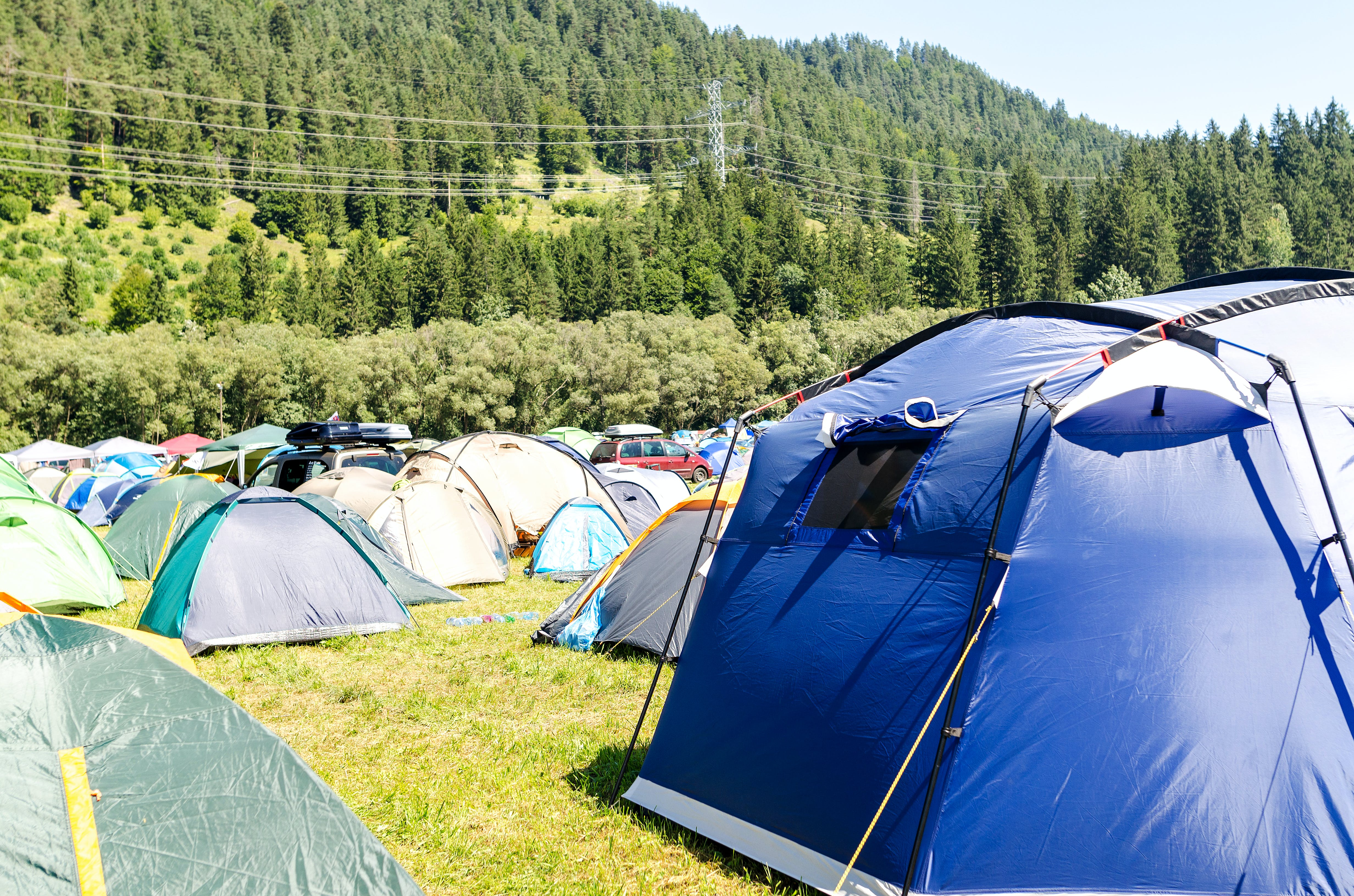 Tents Surrounded by Trees