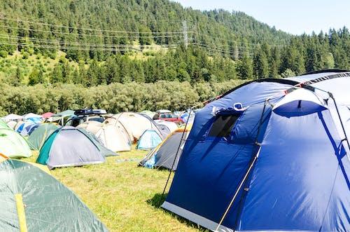 Kostnadsfri bild av äventyr, berg, bilar, campingplats