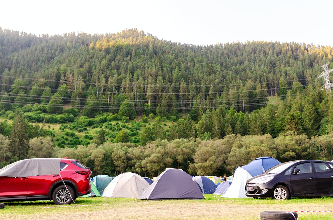 activity, adventure, camp