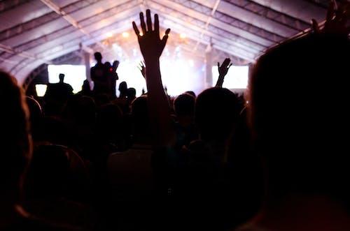 Foto stok gratis backlit, dasar, hadirin, kerumunan orang