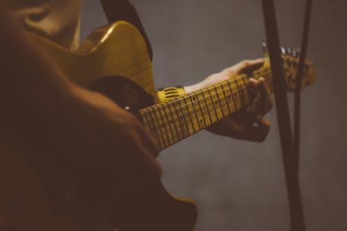 Ingyenes stockfotó elektromos gitár, gitár, gitárhúrok, játékos témában