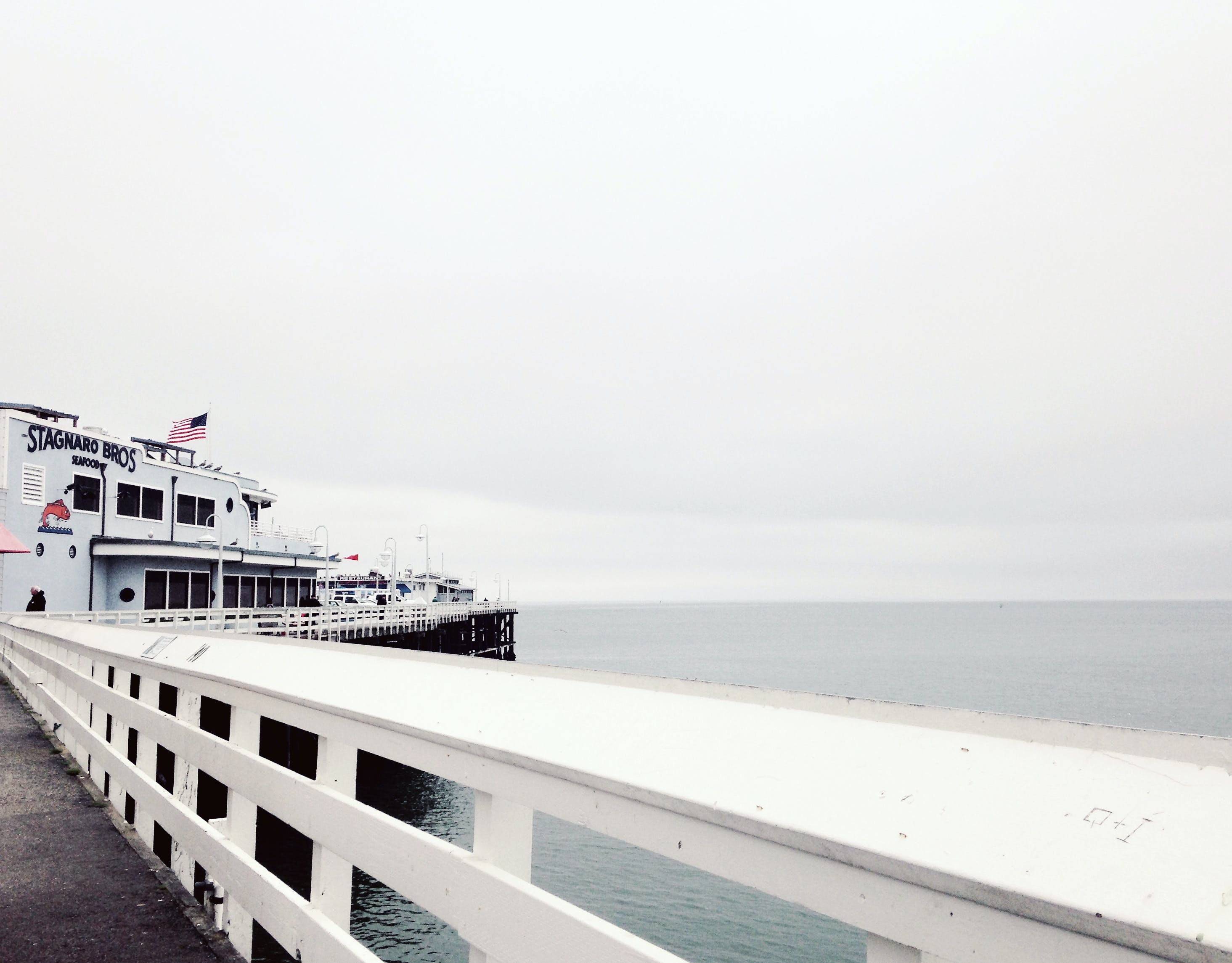 White Cruise Ship Near Concrete Dock on Body of Water Under White Cloudy Sky during Daytime