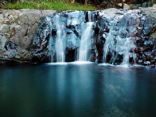 골드코스트, 관목, 깨끗한 물, 매끄러운의 무료 스톡 사진