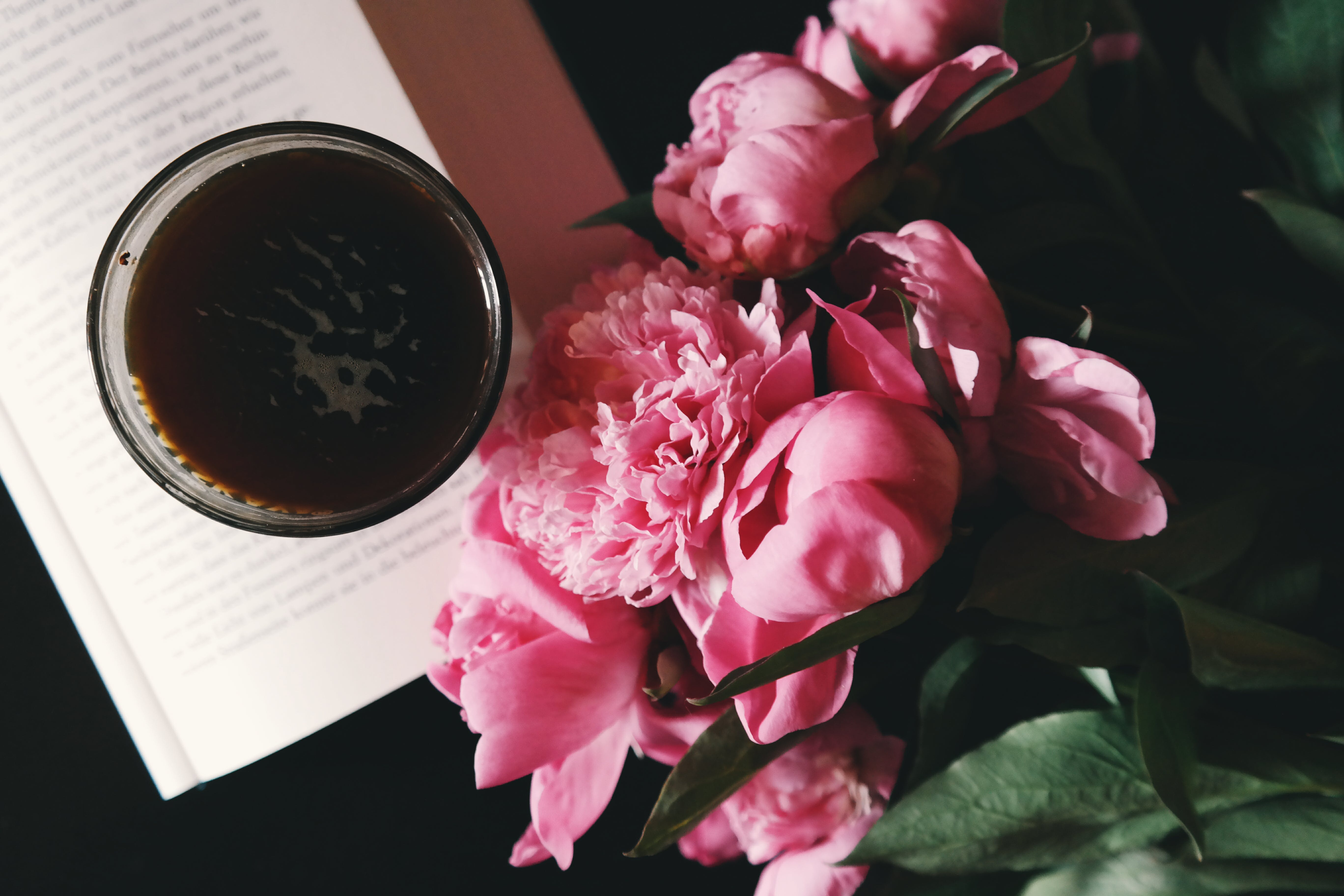 Pink Flowers Beside Cup on Book