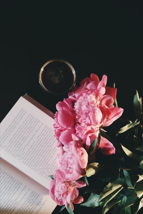 Pink Petaled Flowers Near Opened Book