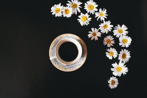 Чашка кофе на блюдце рядом с ромашками