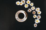 caffeine, coffee, cup