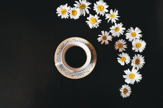Free stock photo of caffeine, coffee, cup, flowers