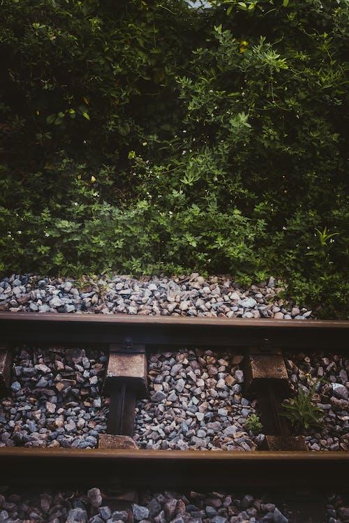 Бесплатное стоковое фото с гравий, дневной свет, дорога, железнодорожная линия