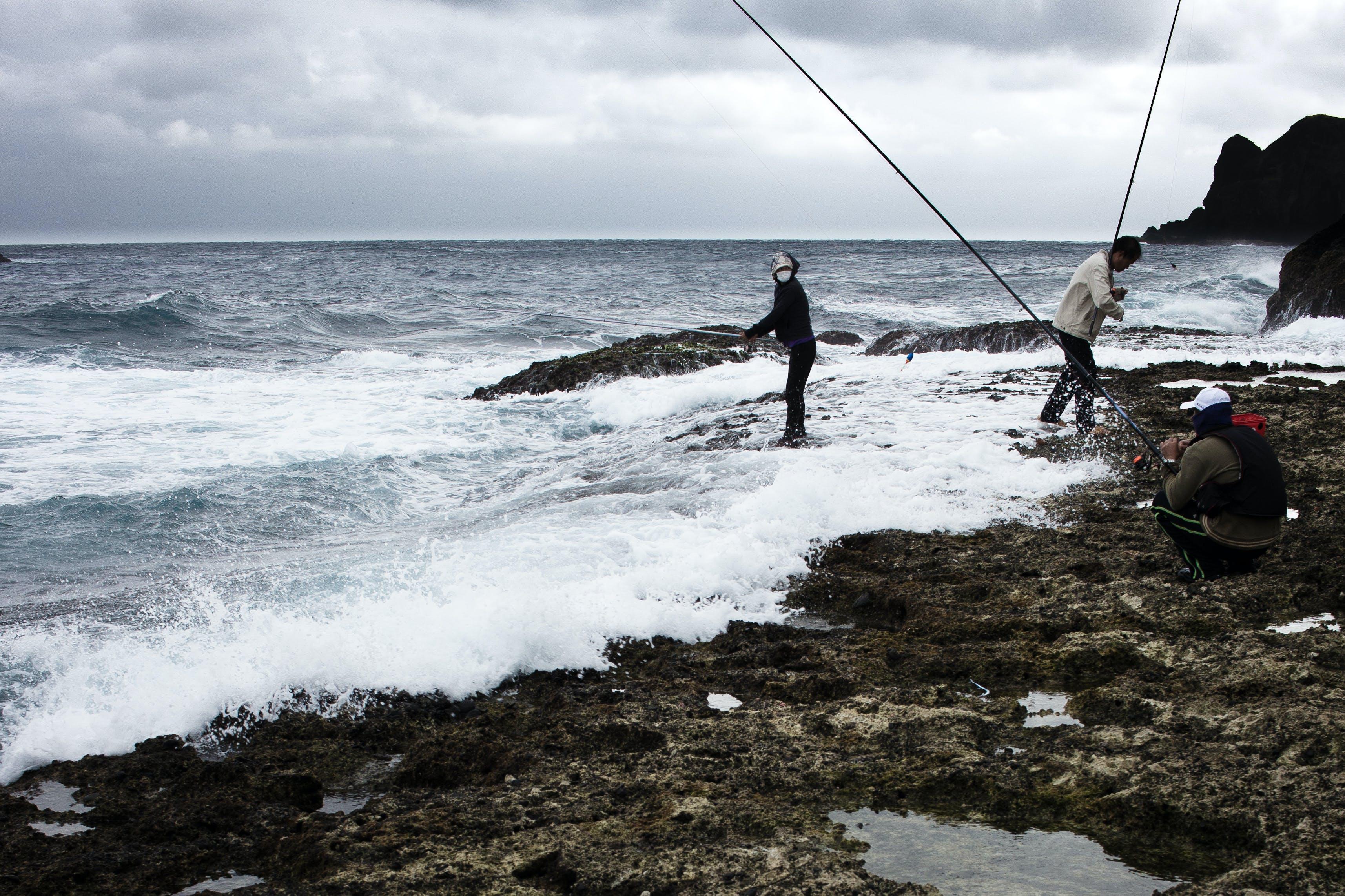 Free stock photo of fishing, fisherman, fishermen