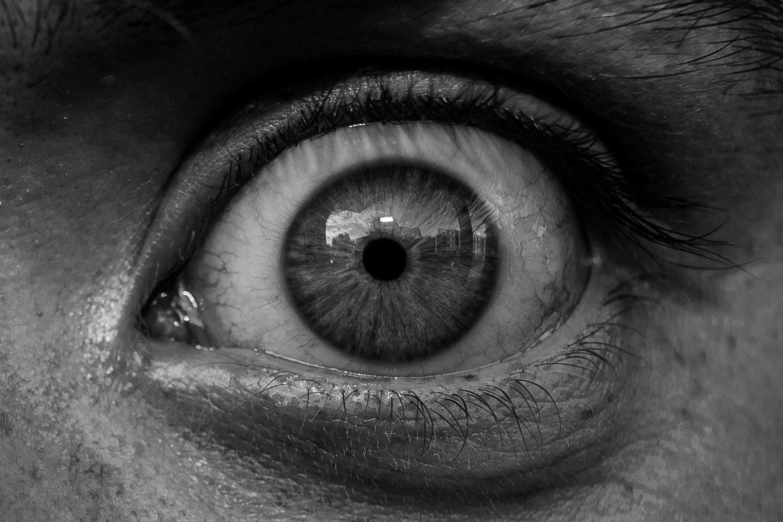 Free stock photo of eye, pupil, iris