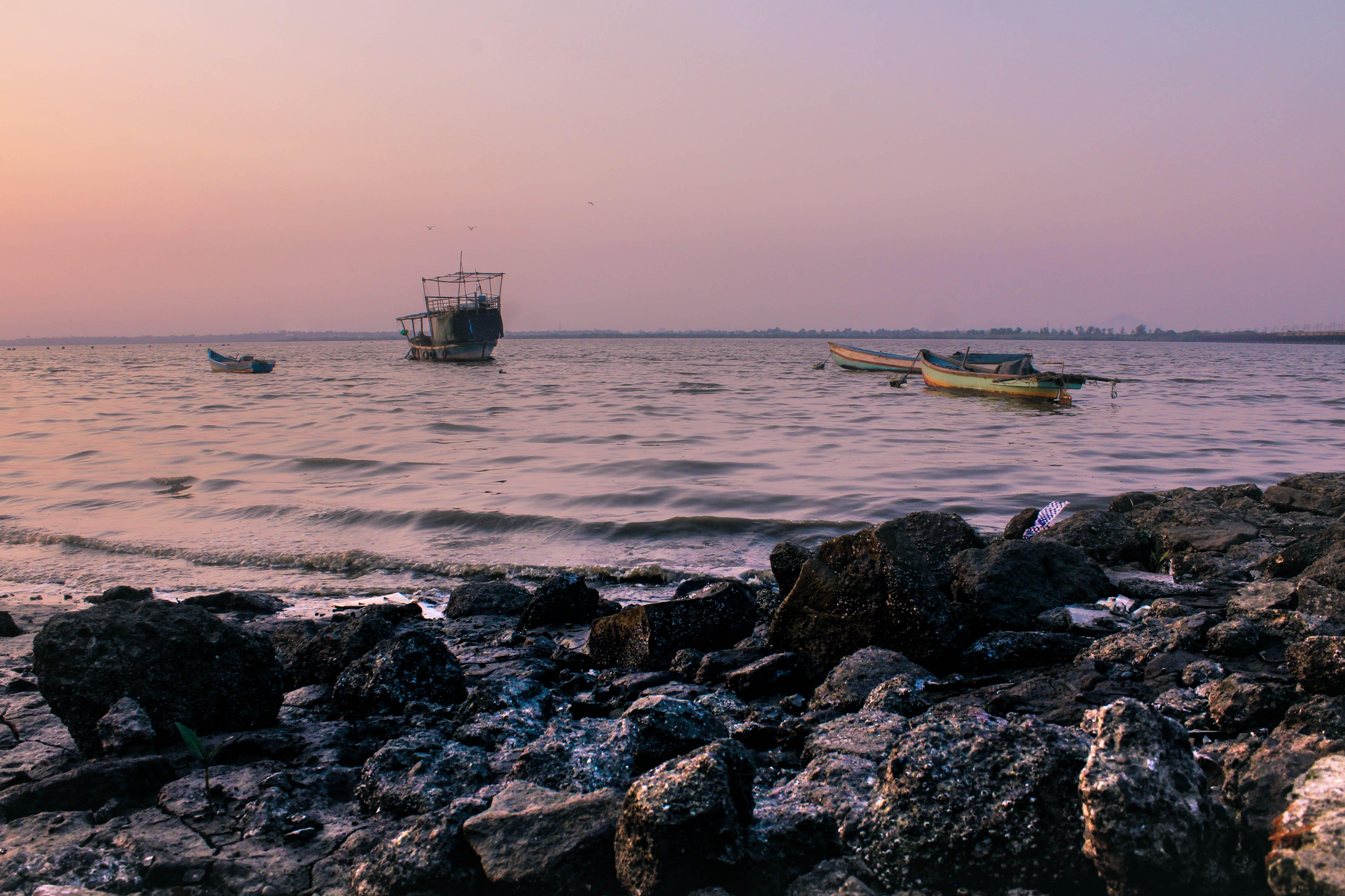 Free stock photo of #sunset