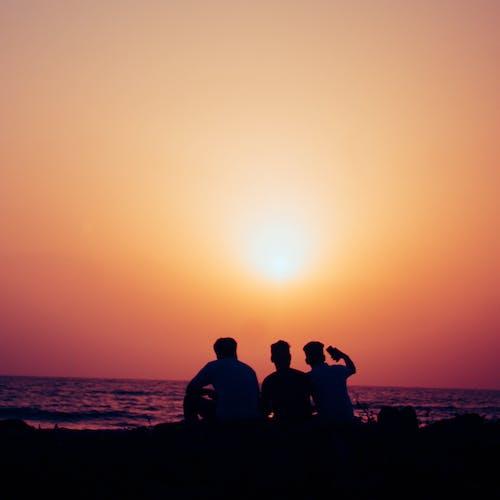 Gratis lagerfoto af bedste venner, selfie, solnedgang