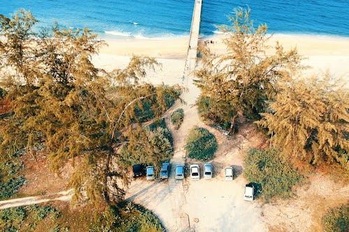 Безкоштовне стокове фото на тему «автомобілі, берег моря, вода, Денне світло»