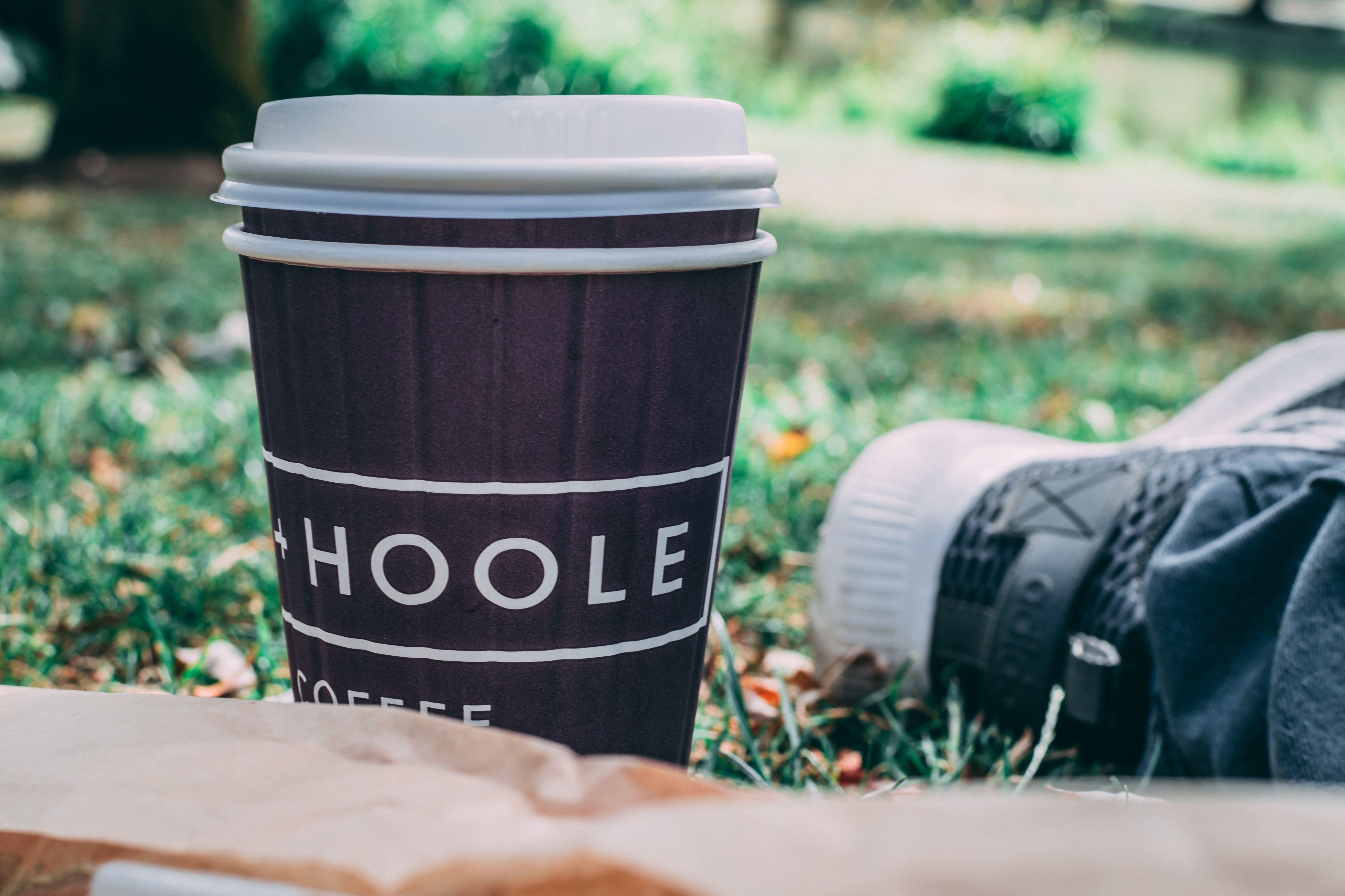 Fotos de stock gratuitas de beber, café, césped, contenedor