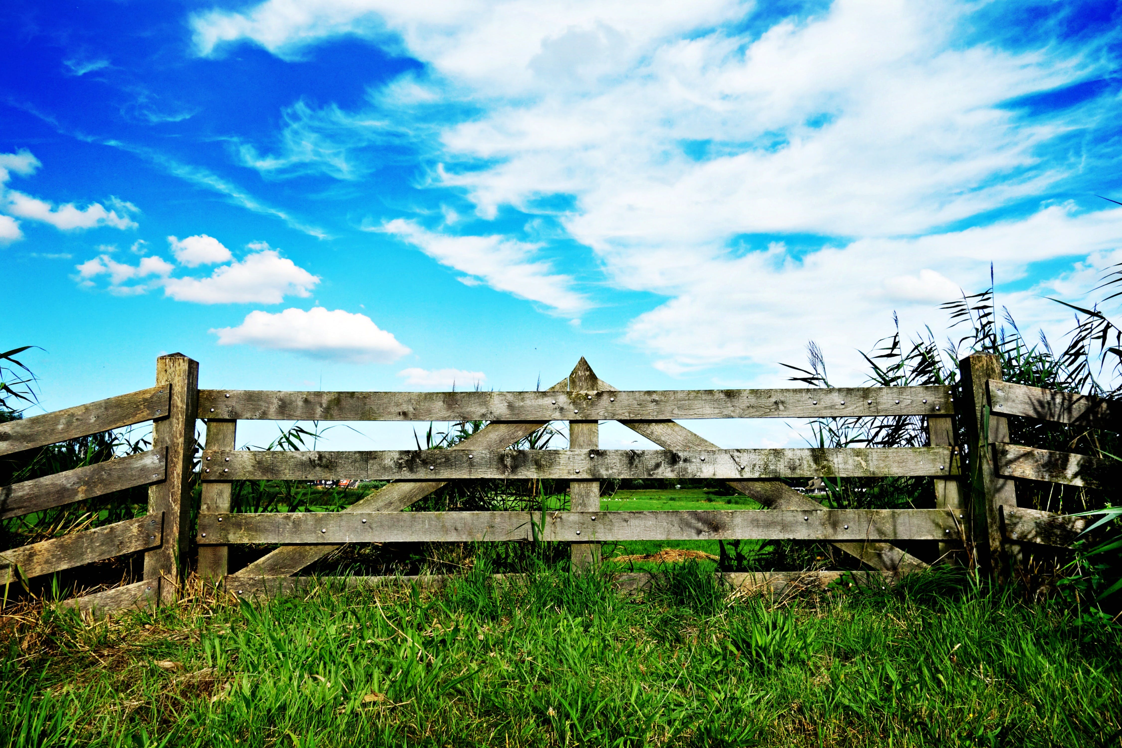 Free stock photo of sky, field, fence, gate