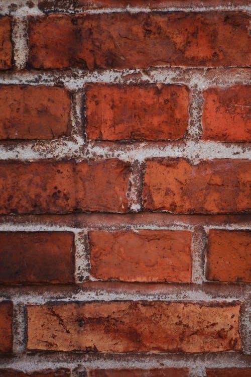 Foto d'estoc gratuïta de argila, casa de camp, mur, mur de maons