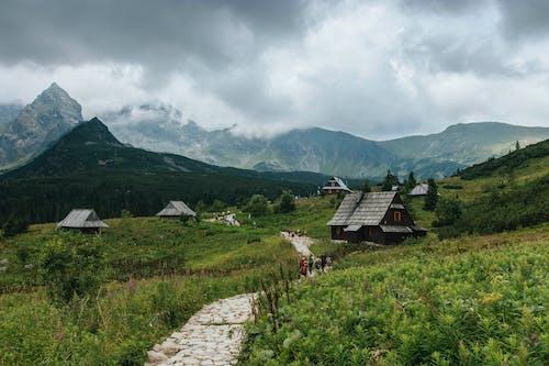 Ingyenes stockfotó 4k-háttérkép, domb, emberek, faház témában