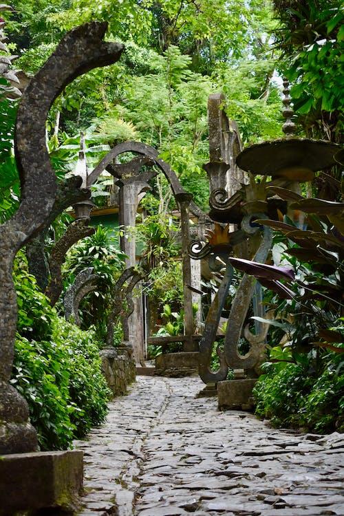 Ảnh lưu trữ miễn phí về rừng nhiệt đới, scultpure, siêu thực, Thiên nhiên