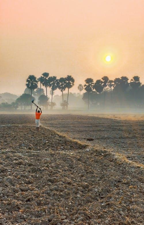 #farmer #hardwork #life #travel #photo #work, #sunrise #human #climate #nature #fog의 무료 스톡 사진