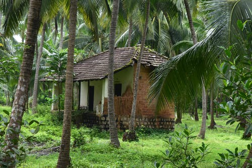 Free stock photo of #abandoned, #houses #southindia