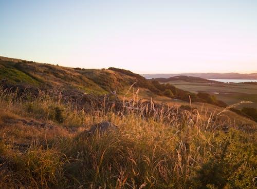 Fotos de stock gratuitas de iluminado por el sol, paisaje, tierra de naranja