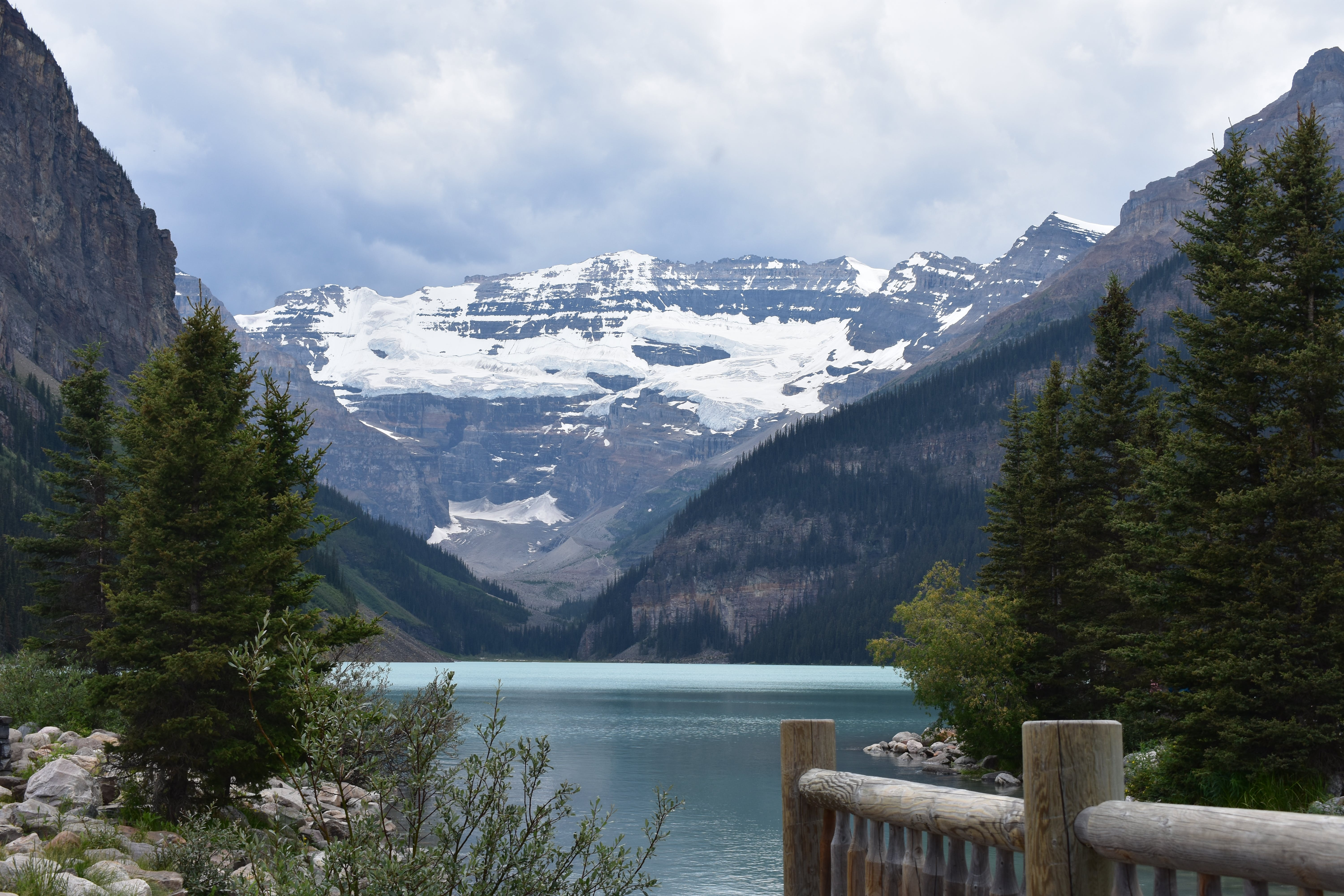 Free stock photo of Canadian rockies, mountains, rocky mountains, trees