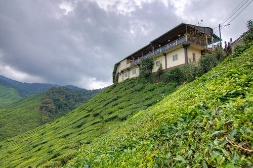 Kostnadsfri bild av åkermark, arkitektur, bergen, bondgård