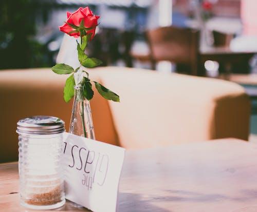 Gratis stockfoto met binnen, bloem, bloemen, creditcard