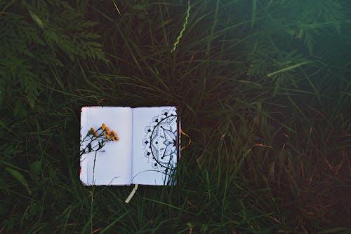 Foto stok gratis Buka buku, buku agenda, buku catatan, buku tulis