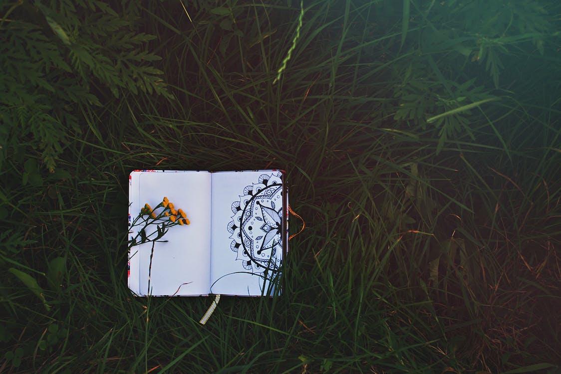 anteckningsbok, gräs, grön