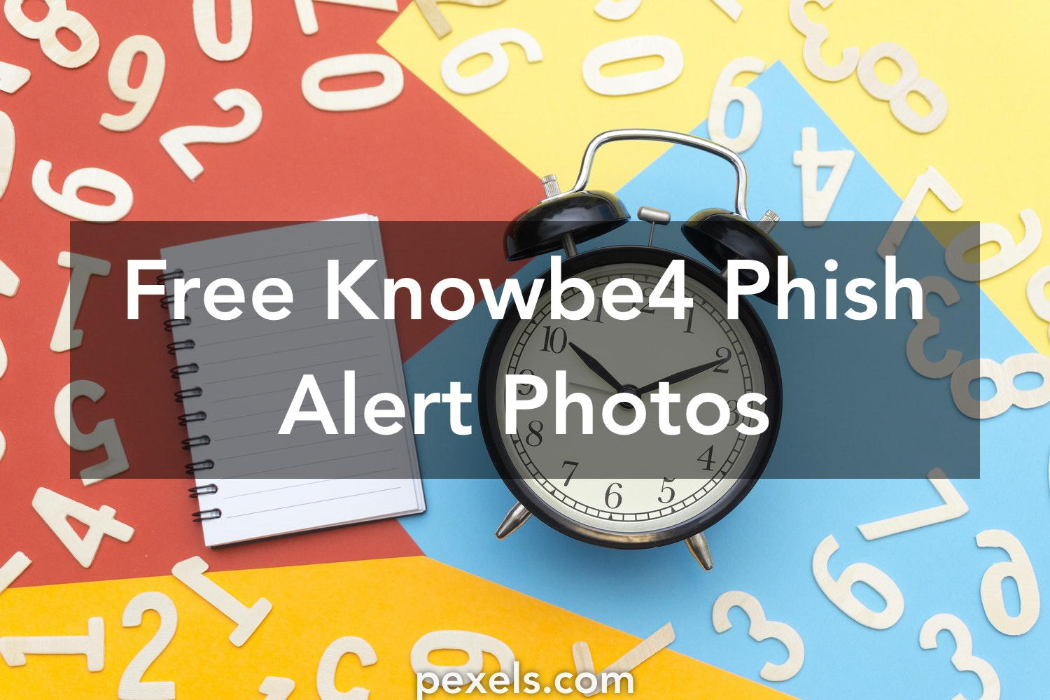 10+ Amazing Knowbe4 Phish Alert Photos · Pexels · Free Stock Photos
